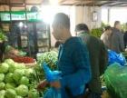 哈尔滨柱子家精品蔬菜店 十年专注蔬菜综合批发配送