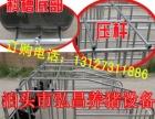 母猪保胎单体围栏限位今日价格行情 河北弘昌生产出售妊娠母猪定