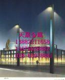 成都景观灯生产厂家-成都景观灯制造批发厂家-成都世纪天晟