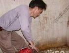 滨州高压清洗管道、清理化粪池、管道清淤