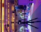 专业婚礼跟拍 年会 联欢会 高清摄像400元