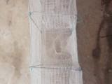 7节4门小号泥鳅笼黄鳝笼虾笼笼子渔具方格网小地笼