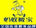 郑州蚂蚁搬家 全国连锁品牌 居民搬家 价格实惠