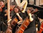 大提琴工作室