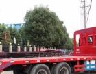 转让 平板运输车5吨到30吨平板运输车现车销售