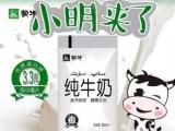 代理牛奶受欢迎火爆市场当属网红小白奶