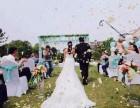 太原周边游太原农家乐草坪婚礼餐厅采摘垂钓烧烤游泳