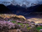 拉萨-林芝桃花沟-波密嘎朗-南迦巴瓦峰-羊湖八日摄影游