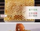 正宗红枣蜂巢蜜、好吃不腻 全国包邮价格公道