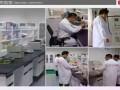 长沙专业室内车内空气净化 甲醛治理检测 除甲醛 去异味