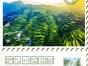 多彩贵州黄果树瀑布西江凯里青岩古镇高铁五日游