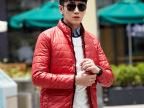 2014新款男士时尚都市羽绒服男式羽绒服休闲韩版羽绒服厂家直销