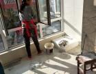 白城专业打扫卫生,擦玻璃,刮大白,清洗油烟机