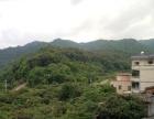 原生态美丽小山村