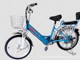 厂家大量批发锂电池锂电电动车 自行车助力车 量大从优