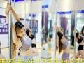 减肥就跳钢管舞/专业钢管舞减肥瘦身/戴斯尔专业培训钢管舞