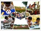 学校组织班级亲子游深圳周边推荐值得去亲子游农庄松山湖生态园