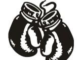 沈阳奥创搏击俱乐部告诉您学习散打的好处