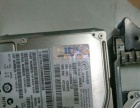 IBM服务器硬盘SAS 146.8G出售