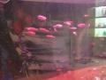 出售一米的水族缸
