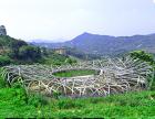 福建莆田市夏季避暑庄园和鸟巢餐厅空降山都木客,邀您来玩期待