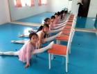 上海专业舞蹈培训中国舞培训零基础培训 艺盈舞蹈