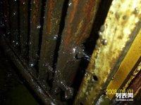 淮安市省强人力资源服务有限公司专业保洁清洗