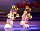 南昌凤舞红谷滩东湖艺术中心 舞蹈学习动作并非越难越好