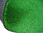 南皮体育塑料草坪背景图