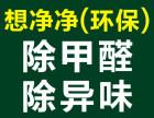 广州黄埔快速除甲醛除异味