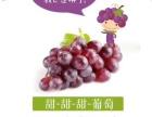 仙果萌专柜水果店甜葡萄单品爆款