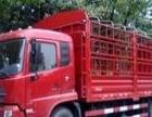 聊城零担物流,专业货运,安全运输