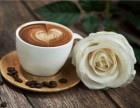温州意克咖啡加盟费用,加盟需要多少钱?