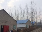 出租养猪场,面积5000平方,用途不限