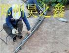 温室大棚好项目昊之鑫公司求合作
