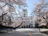 2020年开始烟台日本留学免费了 你还不知道吗
