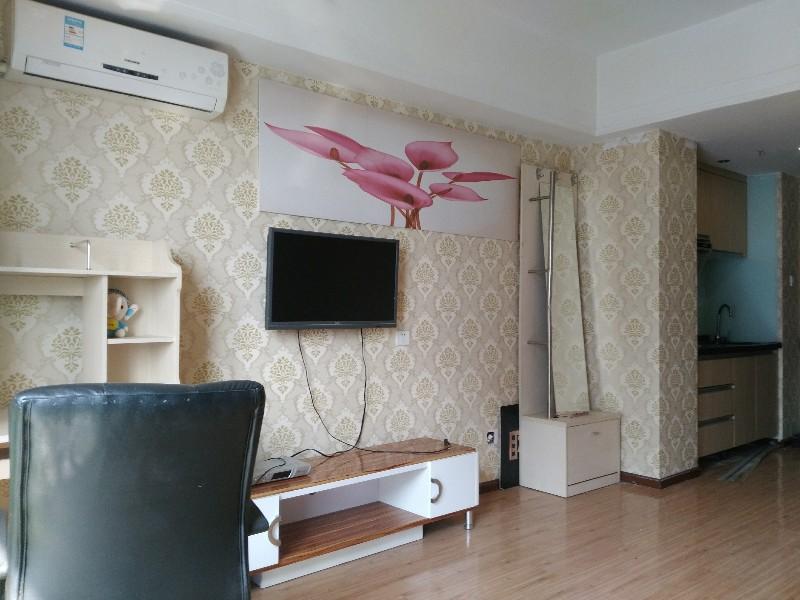 尖岭 万达公寓 1室 1厅 60平米 整租