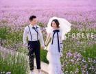 青摄影客片大赏 - 尹女士夫妇
