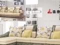 森泰莱免洗沙发加盟 家具 投资金额 1万元以下
