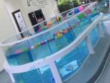 广东婴儿游泳馆加盟 婴儿钢化玻璃游泳池设备厂家价格优惠