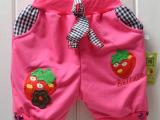 中童草莓纯棉童短裤 女童装裤子批发 童裤批发 童裤 厂家批