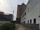 海洋二手钢结构厂房现货出售二手钢结构库房钢结构厂房出售