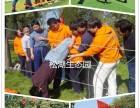 深圳团队出行团建-江湖菜厨艺评比