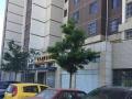 丰州路 南二环中海锦绣城 住宅底商 170平米