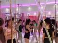 零基础全日制初中高级钢管舞教练班-亚洲钢管舞空中舞蹈学院