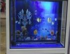 莱芜市亿燕水族有限公司销售生态鱼缸18706345238