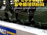 济南190系列发动机 柴油 燃气发电机组供应商