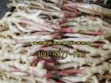 山东生姜种植技术支持