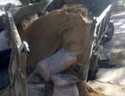 海口装修建筑垃圾清运