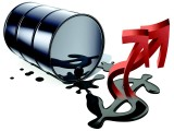 国家发布有关石油资讯,新格局形成引起大家的高度重视